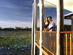 See the magnificent birdlife at Mareeba Wetlands.