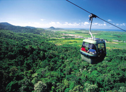 Skyrail - Image courtesy of Tourism Queensland